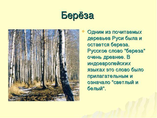 Берёза Одним из почитаемых деревьев Руси была и остается береза. Русское слов...
