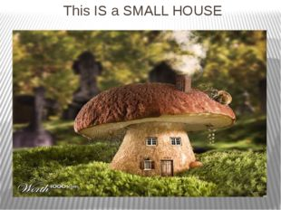 This IS a SMALL HOUSE
