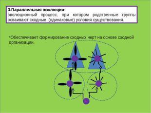 3.Параллельная эволюция- эволюционный процесс, при котором родственные групп