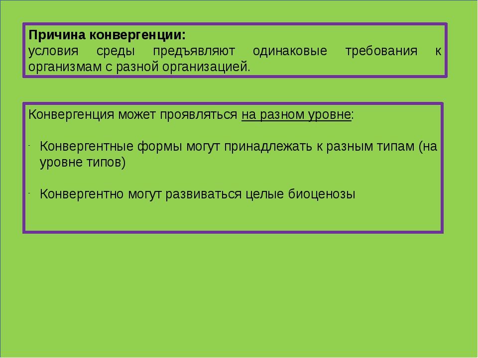 Причина конвергенции: условия среды предъявляют одинаковые требования к орга...