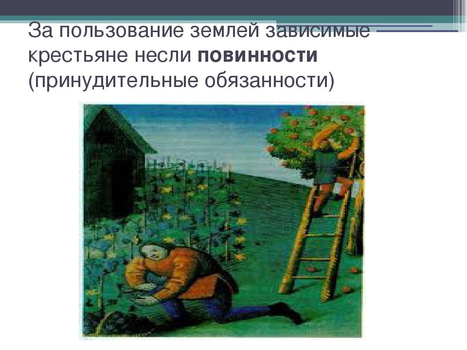 За пользование землей зависимые крестьяне несли повинности (принудительные об...