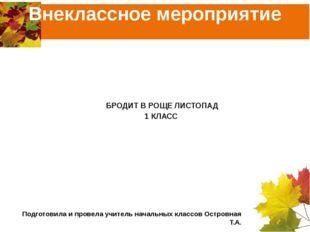 Внеклассное мероприятие МБОУ СОШ №2 Г.Петровска Саратовской области БРОДИТ В