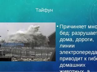 Тайфун Причиняет много бед: разрушает дома, дороги, линии электропередач, при