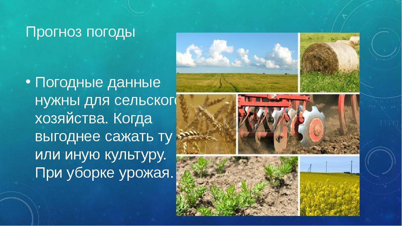 Прогноз погоды Погодные данные нужны для сельского хозяйства. Когда выгоднее...