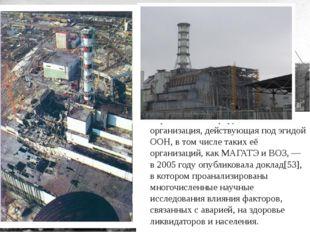 Чернобыльский форум — организация, действующая под эгидой ООН, в том числе т