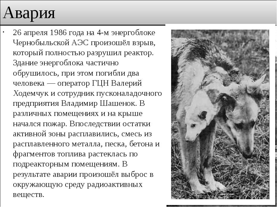 Авария 26 апреля 1986 года на 4-м энергоблоке Чернобыльской АЭС произошёл взр...