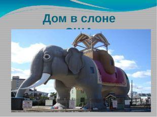 Дом в слоне США
