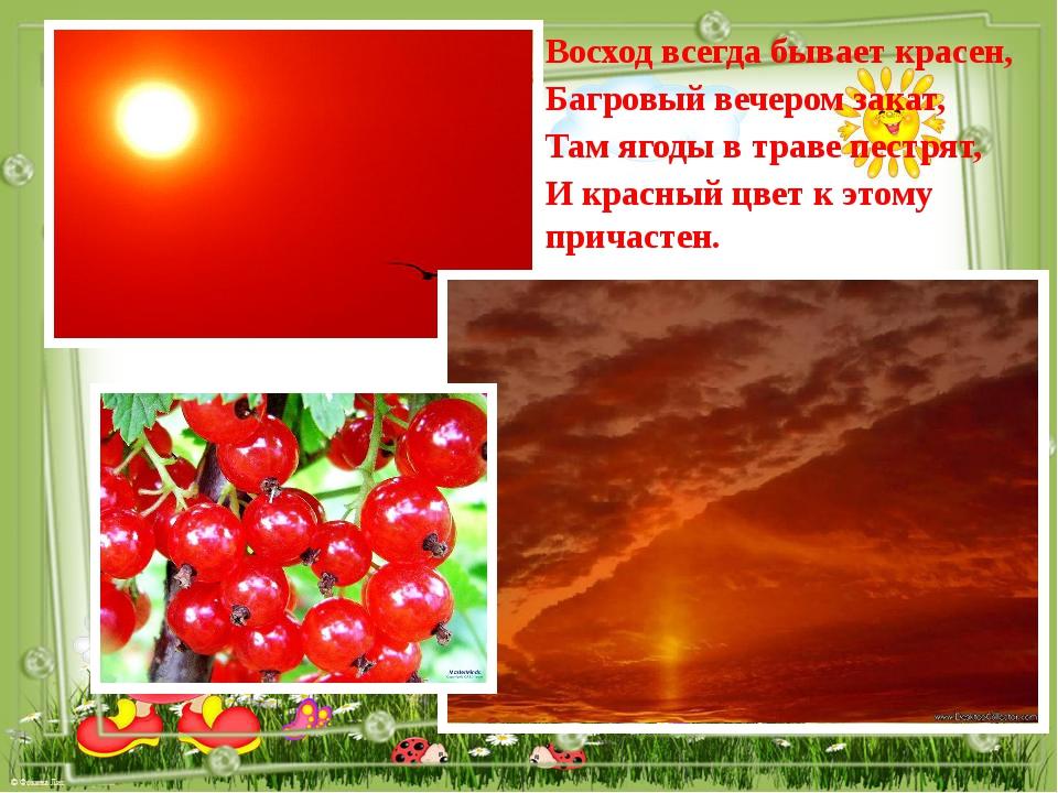 Восход всегда бывает красен, Багровый вечером закат, Там ягоды в траве пестря...