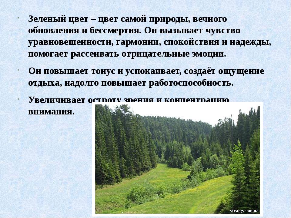 Зеленый цвет – цвет самой природы, вечного обновления и бессмертия. Он вызыв...