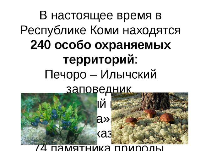 В настоящее время в Республике Коми находятся 240 особо охраняемых территорий...