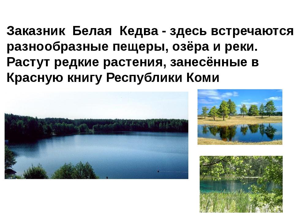Заказник Белая Кедва - здесь встречаются разнообразные пещеры, озёра и реки....