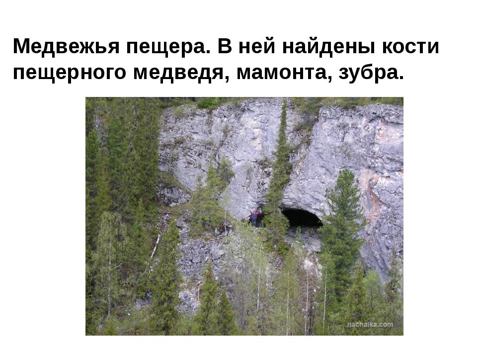 Медвежья пещера. В ней найдены кости пещерного медведя, мамонта, зубра.
