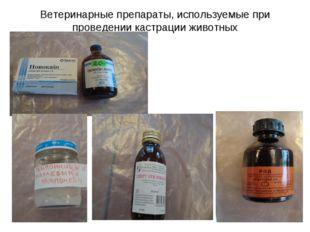 Ветеринарные препараты, используемые при проведении кастрации животных