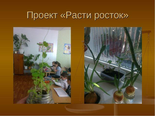 Проект «Расти росток»