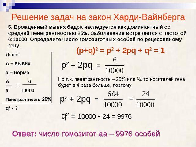 Решение задач на закон Харди-Вайнберга 5. Врожденный вывих бедра наследуется...