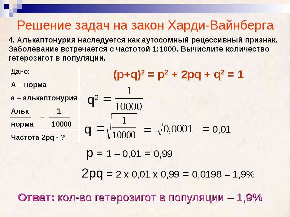 Решение задач на закон Харди-Вайнберга 4. Алькаптонурия наследуется как аутос...