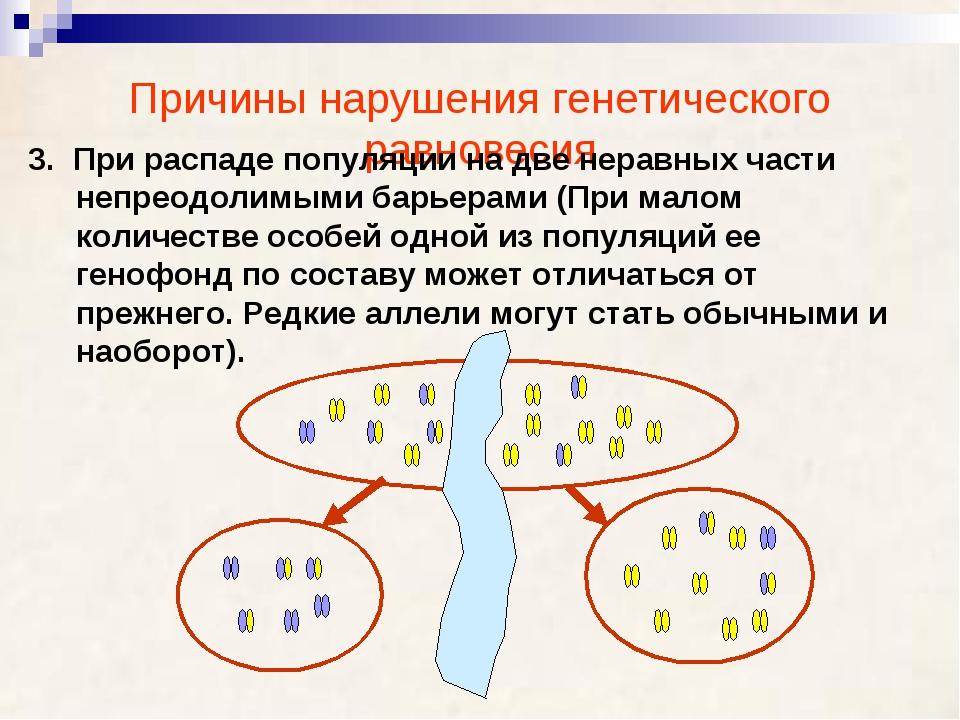 Причины нарушения генетического равновесия 3. При распаде популяции на две не...