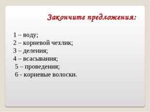 1 – воду; 2 – корневой чехлик; 3 – деления; 4 – всасывания; 5 – проведения;