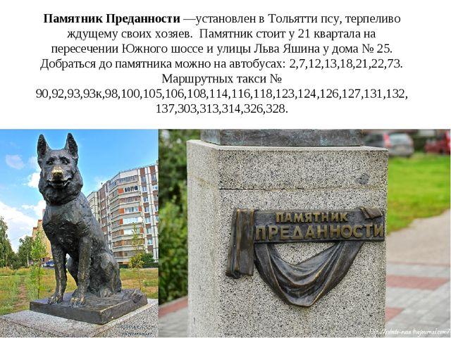 Памятник Преданности—установлен вТольяттипсу, терпеливо ждущему своих хозя...
