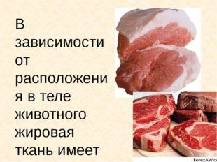 В зависимости от расположения в теле животного жировая ткань имеет соответств