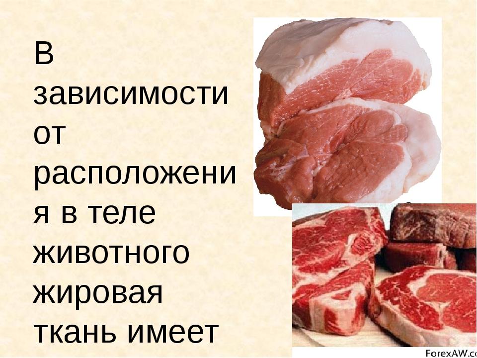 В зависимости от расположения в теле животного жировая ткань имеет соответств...