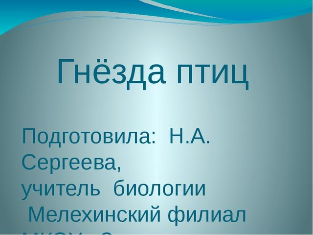 Гнёзда птиц Подготовила: Н.А. Сергеева, учитель биологии Мелехинский филиал М...