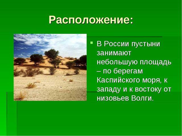 Расположение: В России пустыни занимают небольшую площадь – по берегам Каспий...