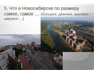5. Что в Новосибирске по размеру самое, самое … (большое, длинное, высокое, ш