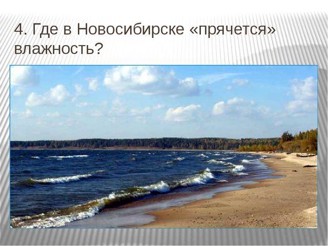 4. Где в Новосибирске «прячется» влажность?