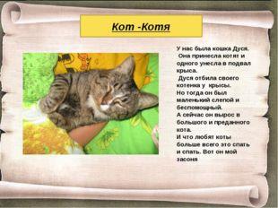 Кот -Котя У нас была кошка Дуся. Она принесла котят и одного унесла в подвал