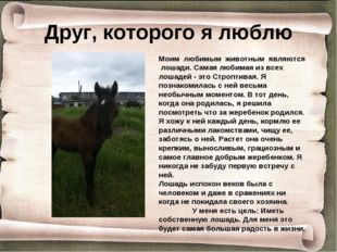Друг, которого я люблю Моим любимым животным являются лошади. Самая любимая и