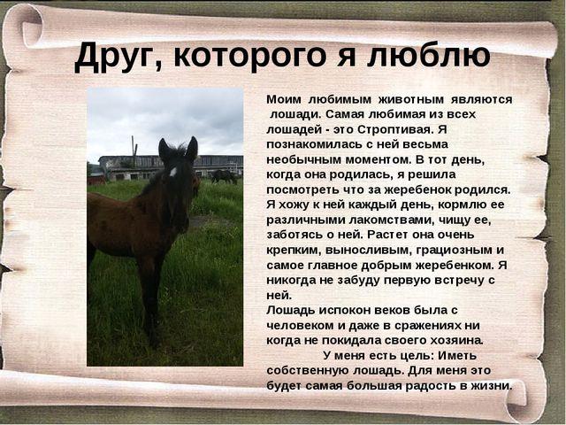 Друг, которого я люблю Моим любимым животным являются лошади. Самая любимая и...