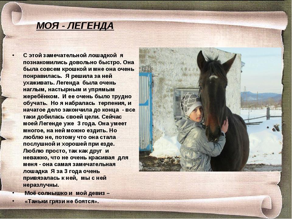 С этой замечательной лошадкой я познакомились довольно быстро. Она была совсе...