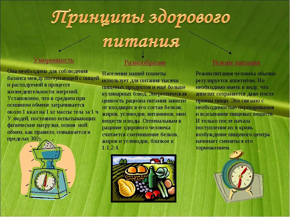 Умеренность Она необходима для соблюдения баланса между поступающей с пищей и...