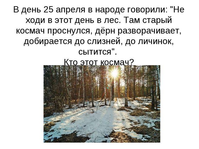 """В день 25 апреля в народе говорили: """"Не ходи в этот день в лес. Там старый ко..."""