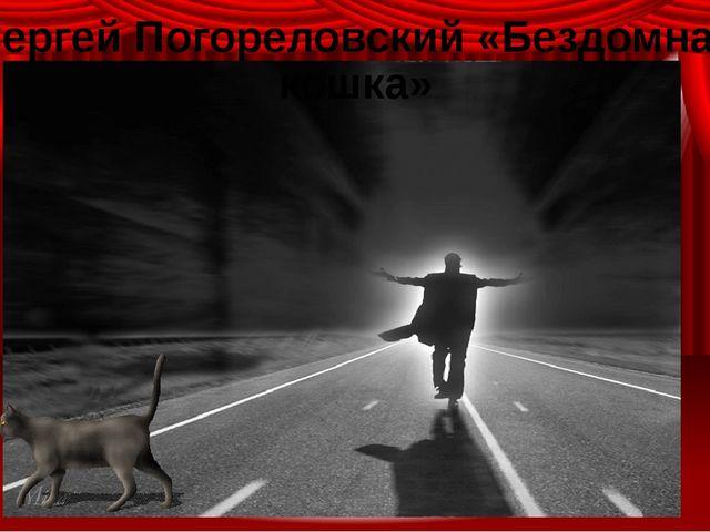 Сергей Погореловский «Бездомная кошка»