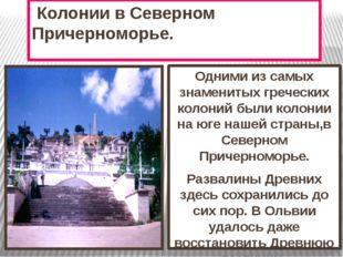 Колонии в Северном Причерноморье. Одними из самых знаменитых греческих колон