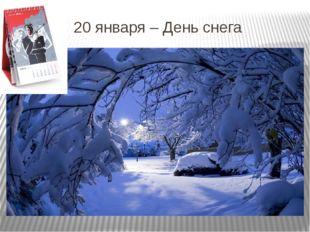 20 января – День снега