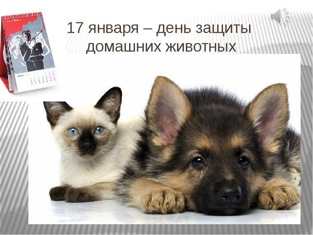 17 января – день защиты домашних животных