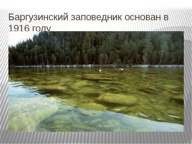 Баргузинский заповедник основан в 1916 году