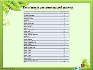 Комнатные растения нашей школы Кабинет Количество растений Коридор 1этажа 12
