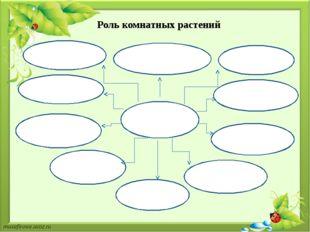 Роль комнатных растений Комнатные растения выделяют кислород; очищают воздух