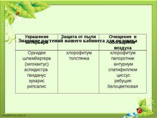 Значение растений нашего кабинета для человека Украшение интерьера Защита от