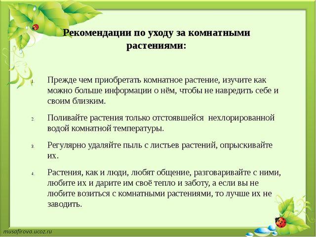 Рекомендации по уходу за комнатными растениями: Прежде чем приобретать комнат...