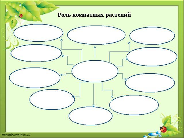 Роль комнатных растений Комнатные растения выделяют кислород; очищают воздух...