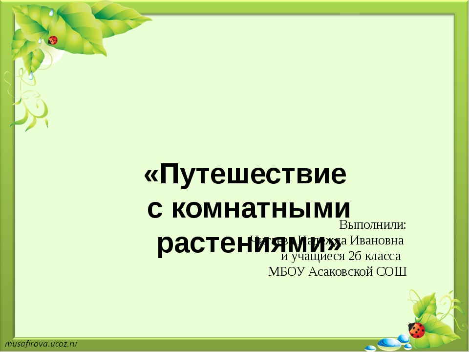 «Путешествие с комнатными растениями»  Выполнили: Чигаева Надежда Ивановна...