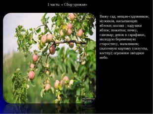 Вижу сад; мещан-садовников; мужиков, насыпающих яблоки; шалаш ; кадушки яблок