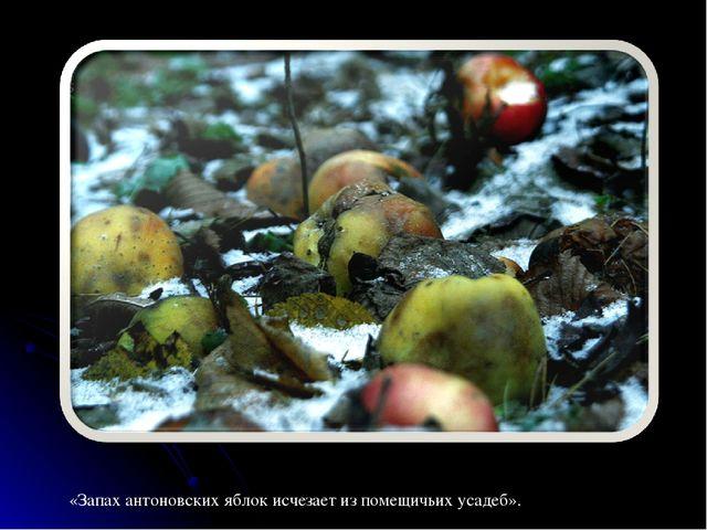 «Запах антоновских яблок исчезает из помещичьих усадеб».