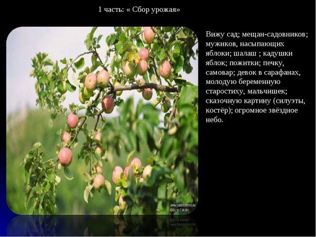 Вижу сад; мещан-садовников; мужиков, насыпающих яблоки; шалаш ; кадушки яблок...