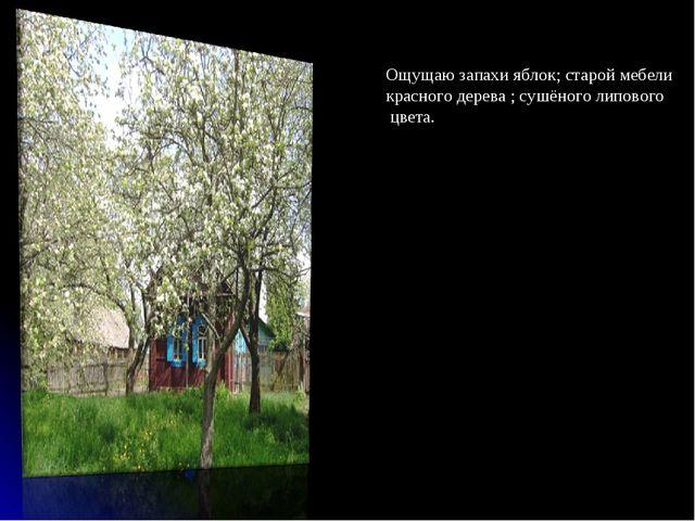 Ощущаю запахи яблок; старой мебели красного дерева ; сушёного липового цвета.